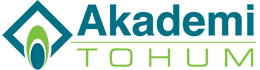 akademi-logo-renkli